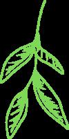 Leaf Green 2
