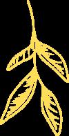 Leaf Yellow 1